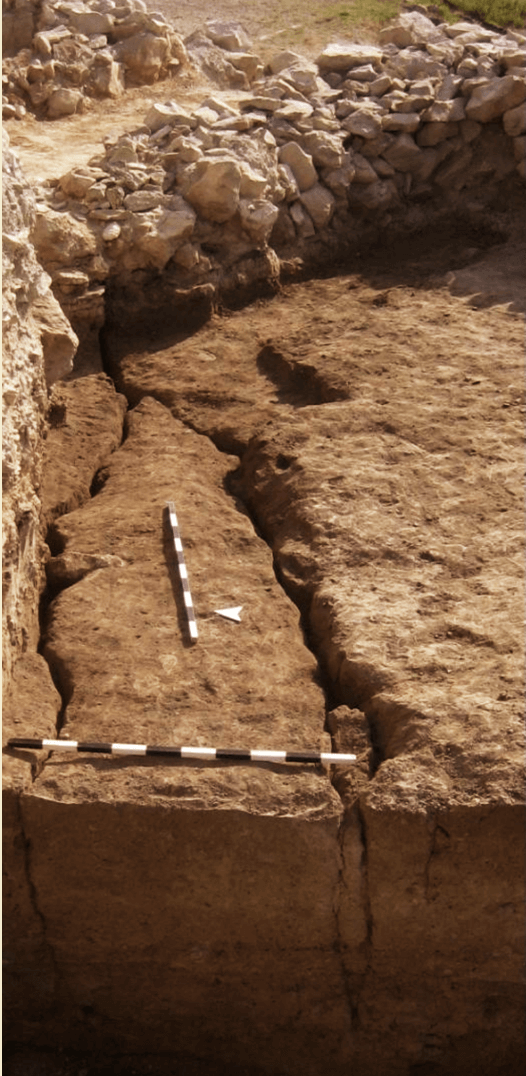 Houses 16, 17 - Middle Chalcolithic; evidence of a devastating earthquake